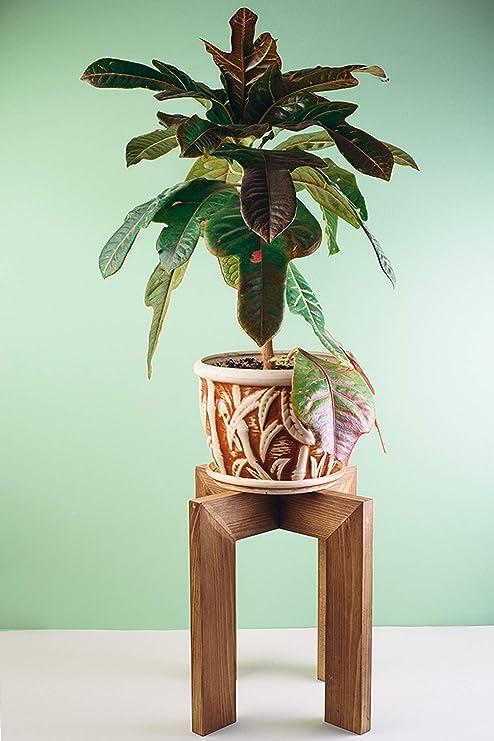 Amazon Com Large Wood Plant Pot Stand Indoor Rustic Adjustable