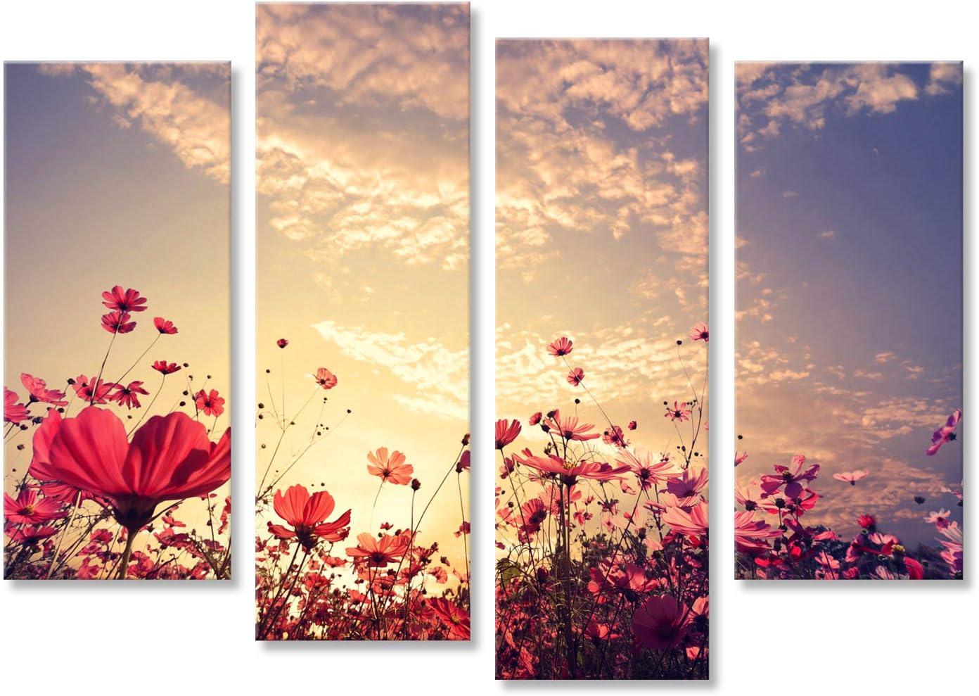 Cuadro Cuadros la Naturaleza de Fondo Paisaje de Campo de Flores Rojas Cosmos Hermosa Rosa y con Sun. Impresión sobre Lienzo - Formato Grande - Cuadros Modernos DRL