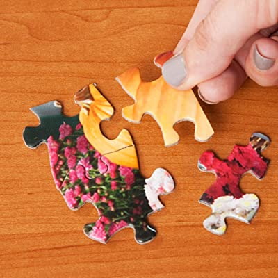 Bits and Pieces 300 Grandes Piezas del Rompecabezas para los Adultos Paisaje Ideal Pc 300 Escena del Resorte de Jigsaw por Artista Alan Giana: Juguetes y juegos