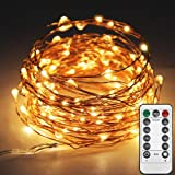 Twinkle Star 33ft 100LED Copper Wire String Lights Fairy String Lights 8 Modes LED String Lights USB Powered with Remote…
