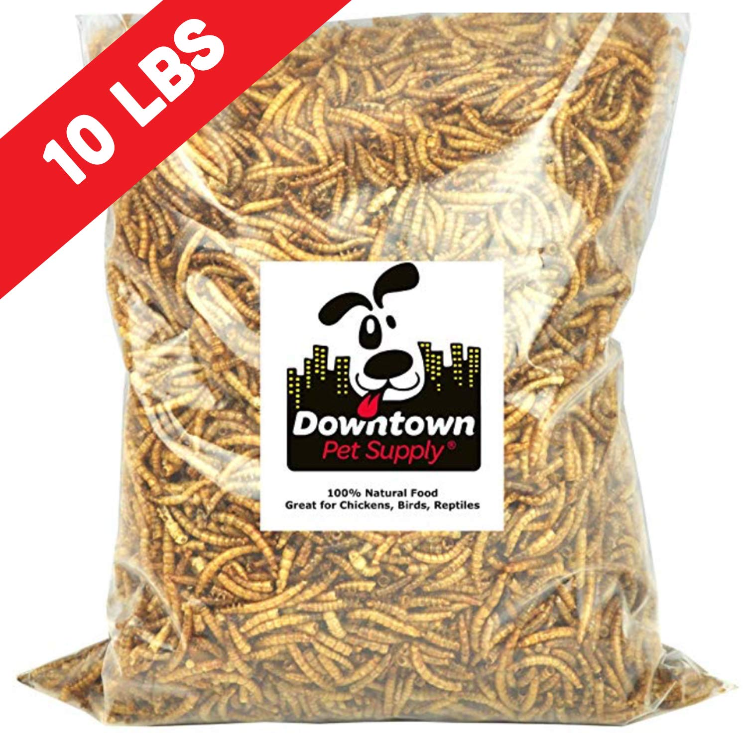 Downtown Pet Supply Dried Mealworms 100% Natural Treats for Wild Birds, Chickens, Reptiles, Fish, Turtles - Meal Worms Dried Food for Birds, Turkeys (10 LB) by Downtown Pet Supply