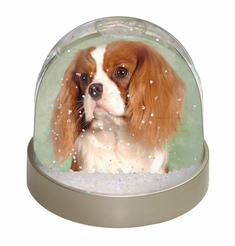 Advanta Blenheim King Charles Spaniel Snow Dome Globe Waterball Gift, Multi-Colour, 9.2 x 9.2 x 8 cm Advanta Products AD-SKC7GL