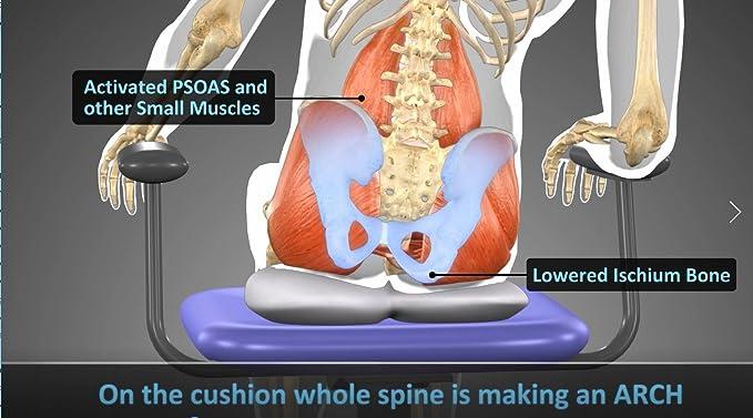 Happy Psoas Orthopaedic - Cojín de asiento interactivo ...