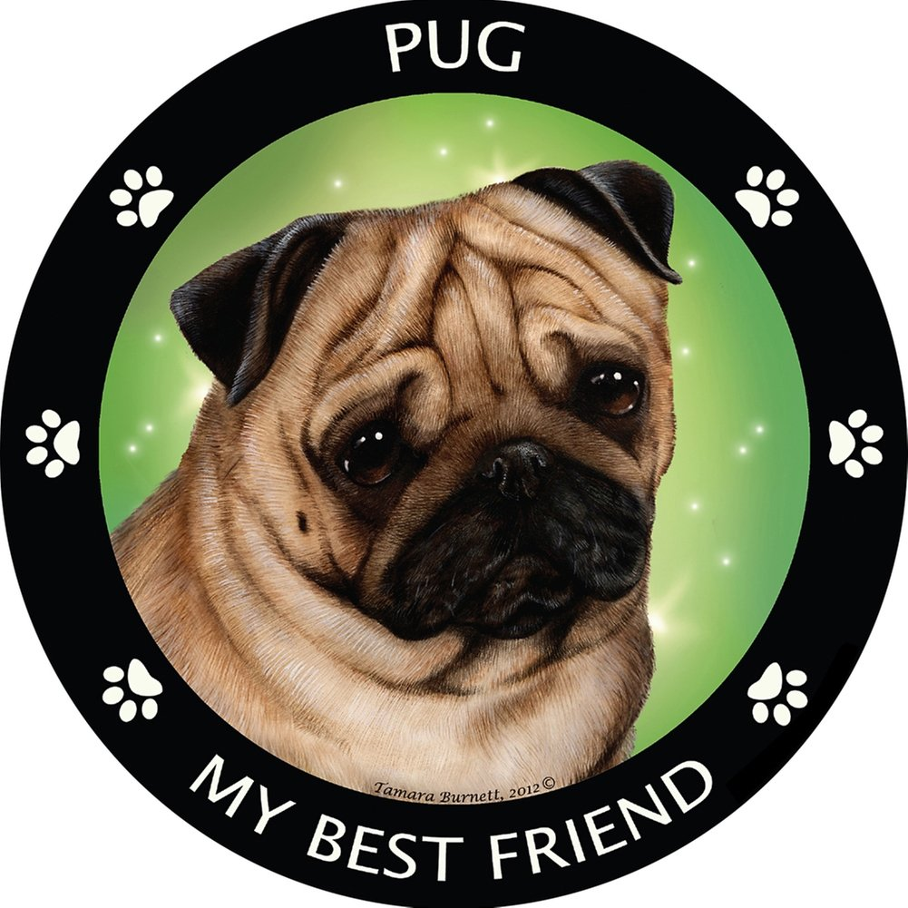 Pet Gifts USA Silver Akita My Best Friend Magnet