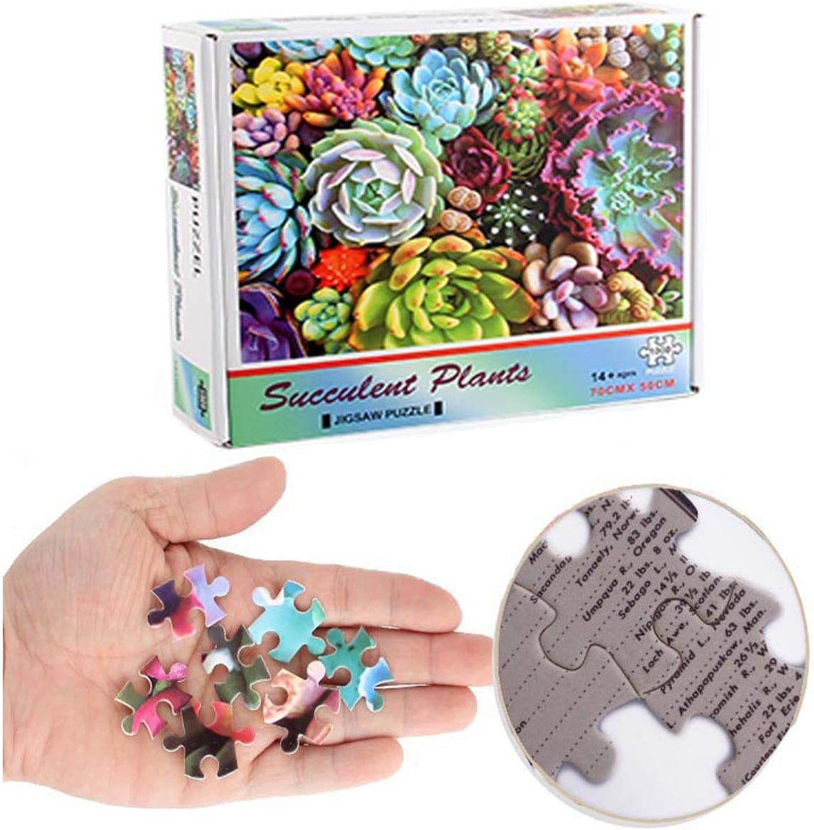 Jigsaw Puzzles 1000 Pieces for AdultsSucculentsJigsaw Puzzle Home Game for Men Women Kids Recycled Cardboard
