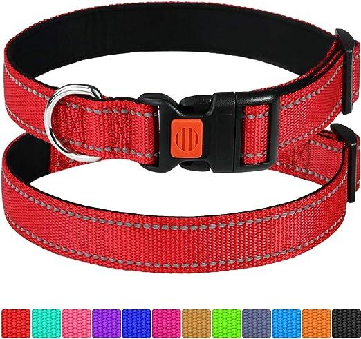 Taglory Collar de Perro Personalizado/Placa de Nombre grabada ...