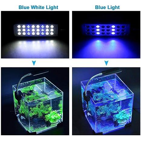 24 Clip para Acuario Luz LED, Brazo Flexible para Iluminación De Tanque De Peces Brazo Flexible con 2 Modos De Trabajo: Azul, Blanco + Azul Claro (Negro): ...