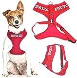 SERVICE DOG (Do Not Disturb/Dog Is Working) Red