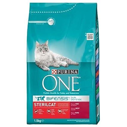 Purina One bifensis para gatos pienso pavo y trigo Croccantini 1,5 ...