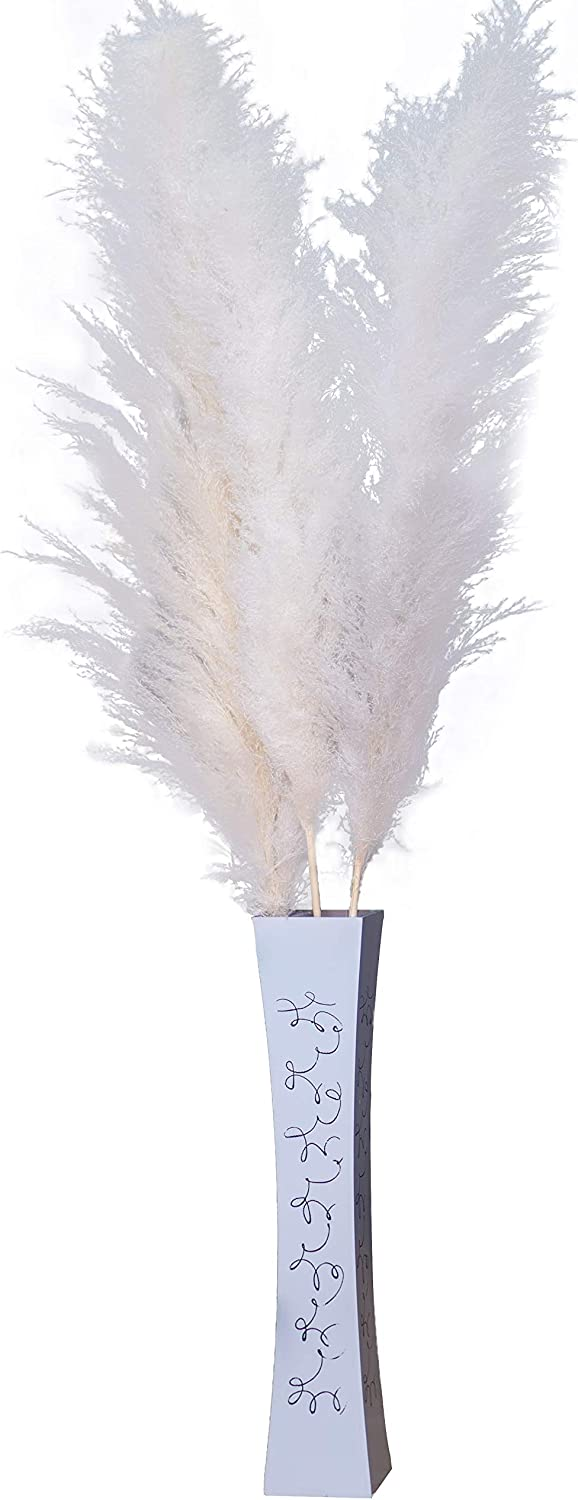 Dried Reed Pampas Grass 3 Stems (48 inches Tall) Flowers Fluffy Ornamental Plants for Home Decoration Wedding Decor Rustic Centerpiece Table Arrangement - Boho Chic Modern Decorative Display - White