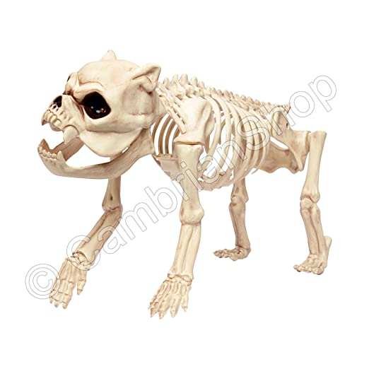 life size skeleton dog halloween prop decoration amazoncouk kitchen home
