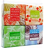 Tropical Breeze Soap Sampler - Boxed Set of 4 Assorted Scents