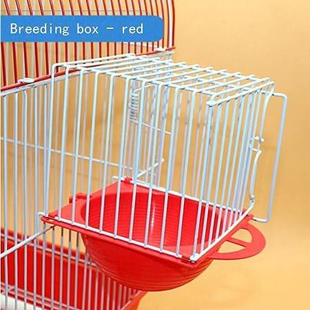 Liuyu · Casa de la Vida Nido de Pájaro Loro Plástico Caja de Cría de Accesorios de Jaula de Pájaro Colgante Externo 11 * 10.7 * 10 cm (Color : Red): Amazon.es: Hogar