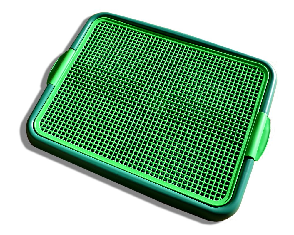 Blyss Pets Klean Paws Indoor Dog Potty, No Torn Potty Pads! Keep Paws Dry! Protect Floors! Easy Cleanup On Pads! for Puppies, Small Dogs & Cats, 1 Puppy Pad Holder Tray, Guarantee by Blyss Pets