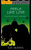 Feels Like Love (Mustang Prairie Romance Book 3)