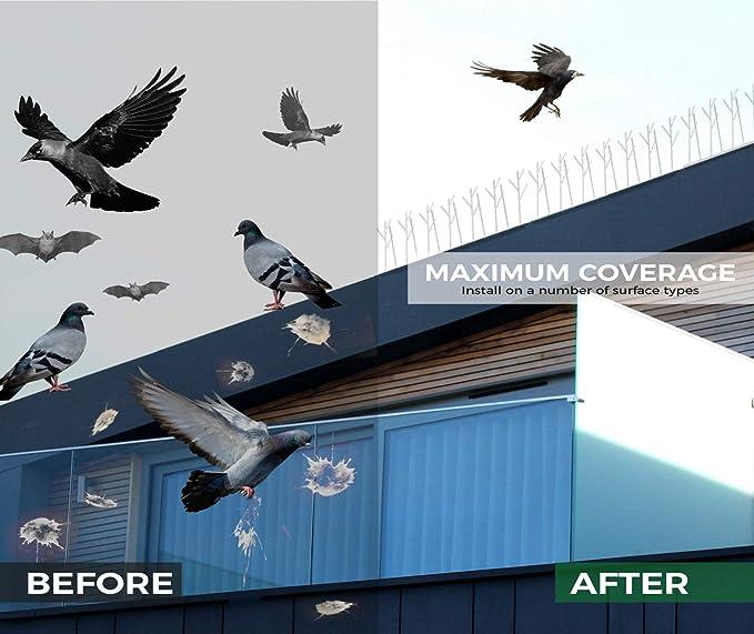 Amazon.com: Aspectek Bird Spike, Transparente: Jardín y ...