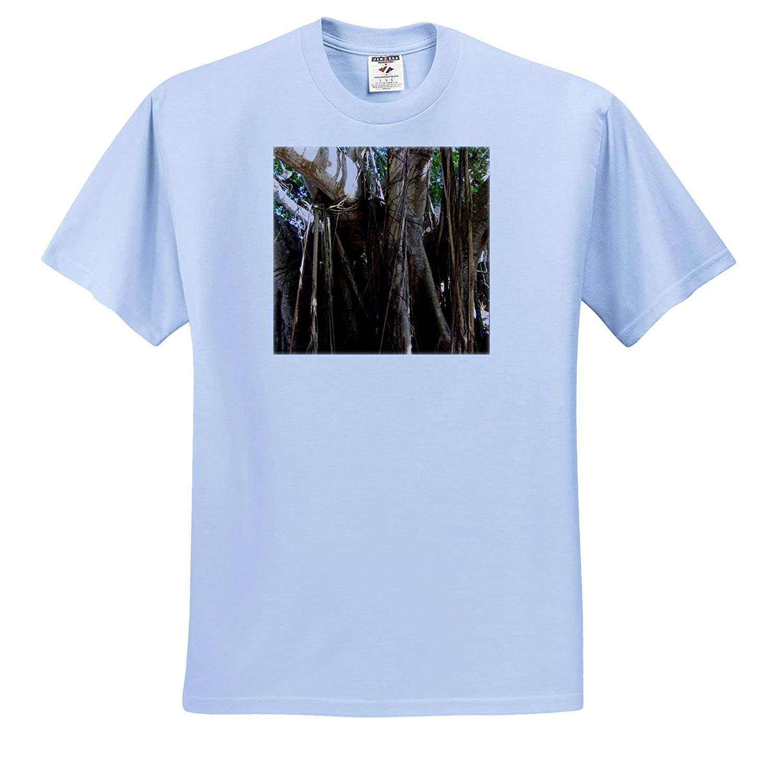 Fantastic Florida T-Shirts 3dRose Lens Art by Florene Image of Giant Banyan Tree at Fort Myers Florida