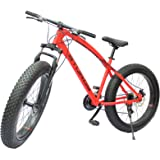 STURDY BIKES Fat Mountain Bike with 26X4 Inch Tyres (Red)