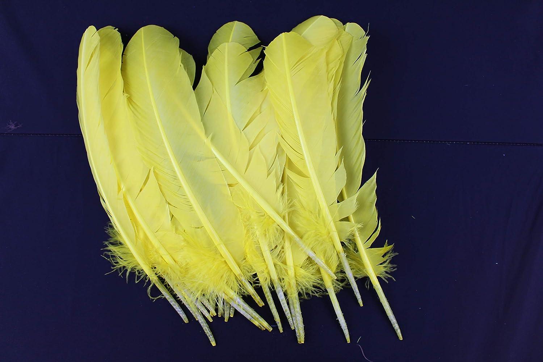 5 20 pcs quality Quail Feathers