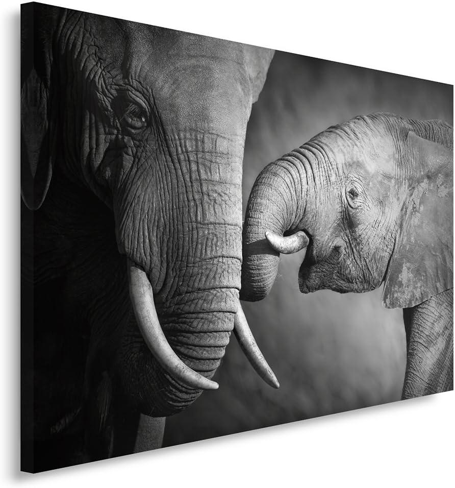Feeby Frames Cuadro en Lienzo, Cuadro Impresión, Cuadro Decoración, Canvas 80x120 cm, Familia DE LOS Elefantes, Blanco Y Negro
