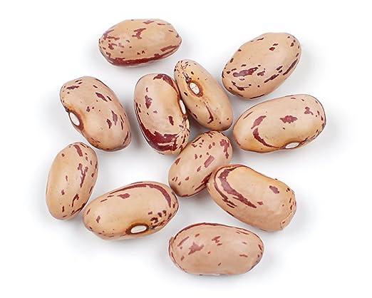 Cranberry Beans, 10 Pound Box