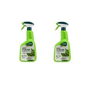 Safer Brand 5110-6 Insect Killing Soap, 32 oz. - 2 Pack