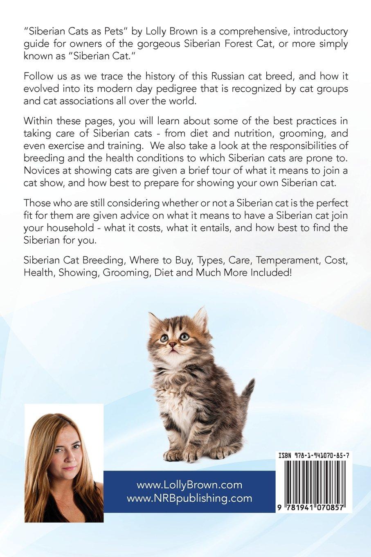 Siberian Cats as Pets Siberian Cat Breeding Where to Buy Types