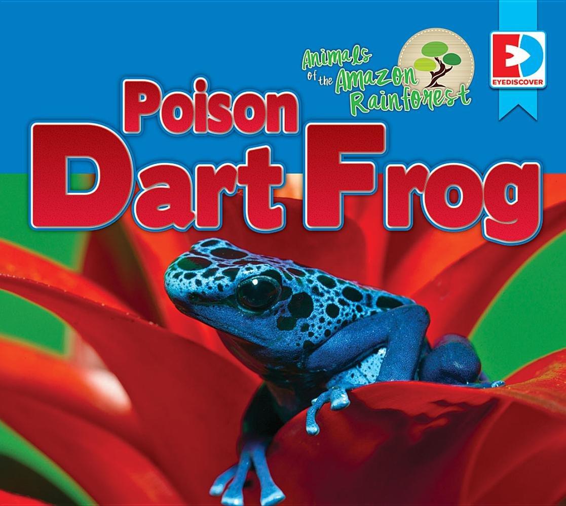 Poison Dart Frog (Animals of the Amazon Rainforest)