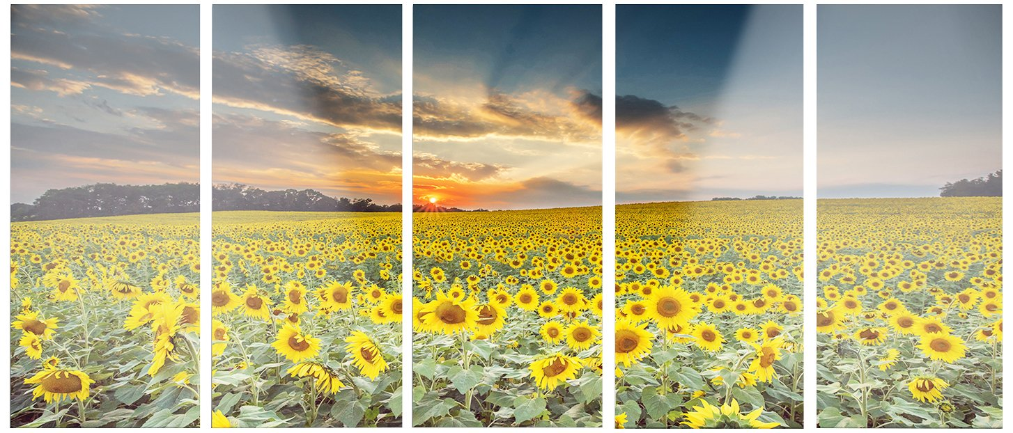 60x28  - 5 Equal Panels Designart MT14250-401 Sunflower Sunset with Cloudy Sky Landscape Canvas Metal Wall Art, Yellow, 60x28