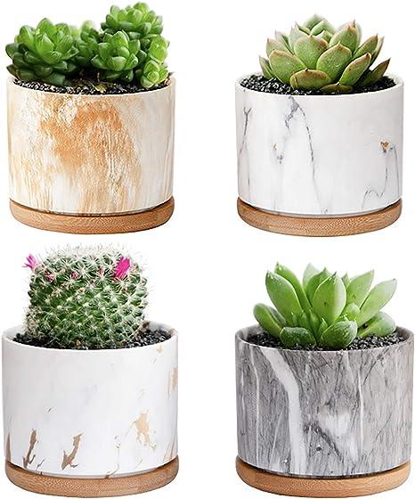 aloe planter Ceramic planter succulent pot small planter purple planter