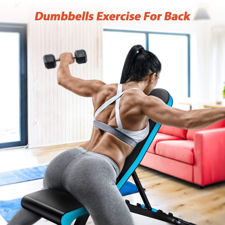 WINNOW Hantelb/änke Verstellbare Schr/ägbank Home Fitness Trainingsbank Steigung Gef/älle Flache aufrechte Bauchmuskeln Kurzhantel ufsetzen Bauchmuskeltraining /Übung Gewichtheben
