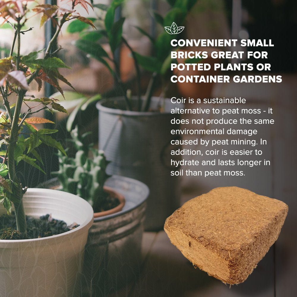Coconut Coir Fiber - 4 Pack of Convenient Blocks - All Natural and Environmentally Friendly Coconut Peat by Triumph Plant (Image #4)