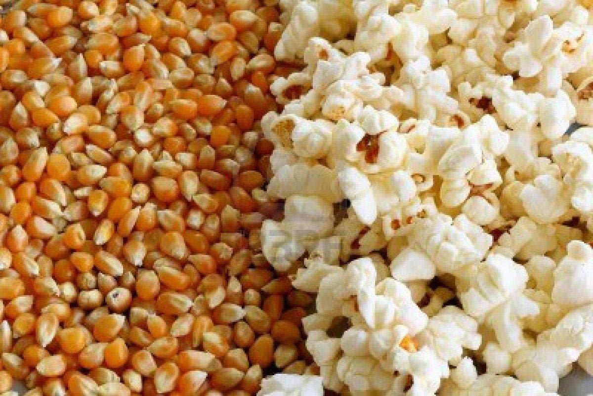 Aapkidukan Pop Corn Kernels(Dried Corn) 2 KG: Amazon.in: Grocery & Gourmet Foods
