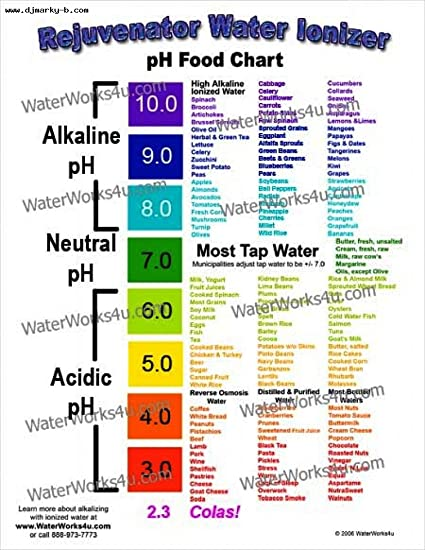 Amazon Color Coded Ph Food Chart Health And Personal Care
