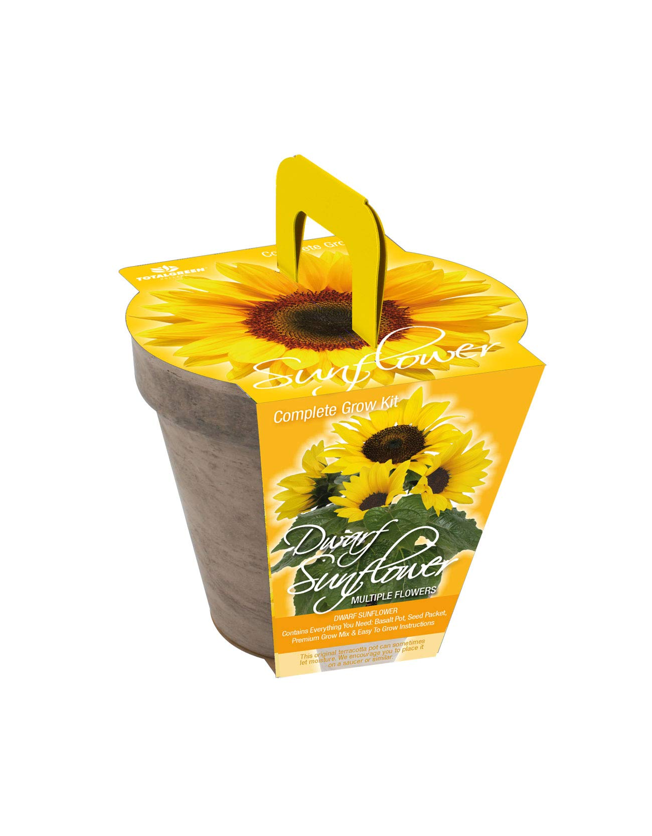 Quality Sunflower Grow Kit | Grow Your Own Unique Dwarf Sunflower from Seed in Just A Few Weeks | Unique Basalt Pot, Non-GMO Mother's Day Gardening Kit with Easy Instructions | by TotalGreen Holland (Image #3)