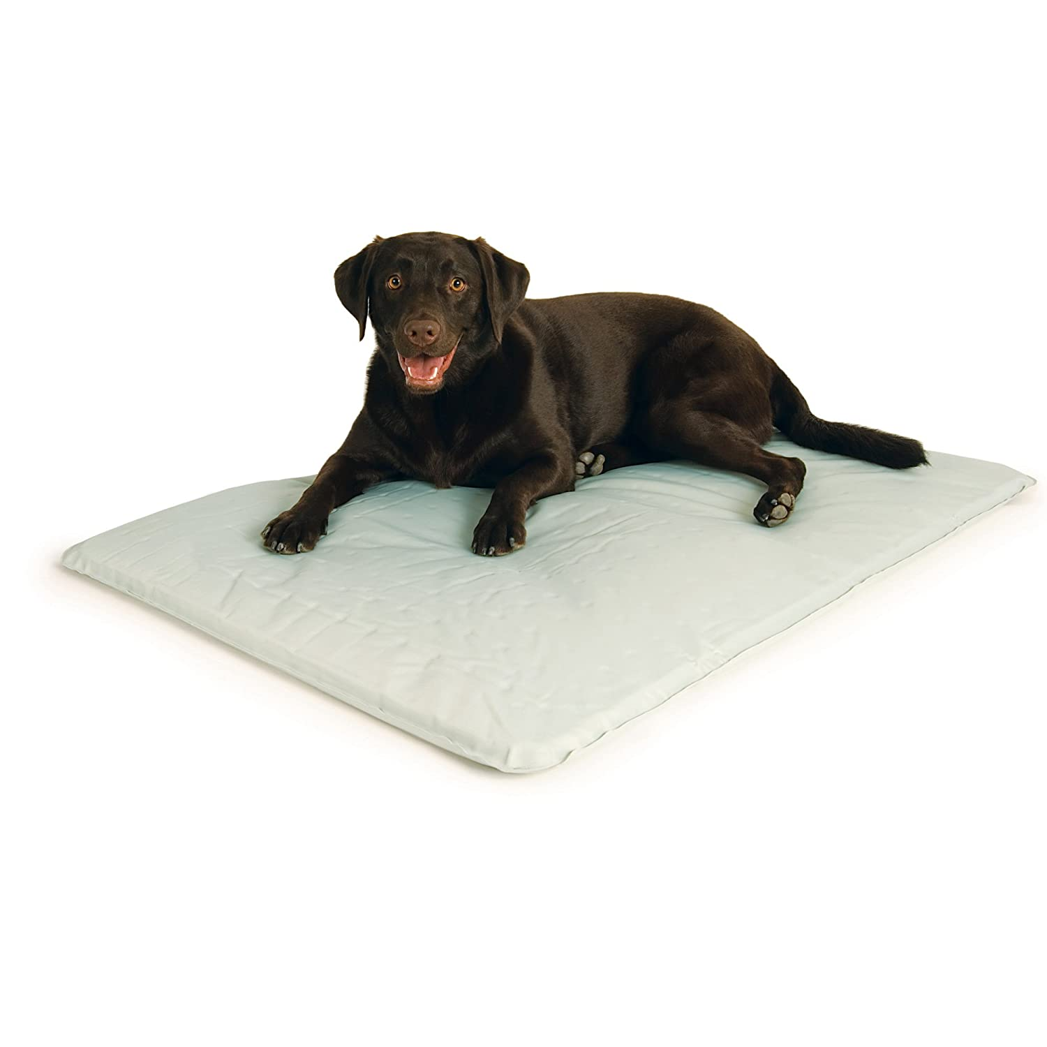 K&H Cool Bed III Cooling Dog Bed