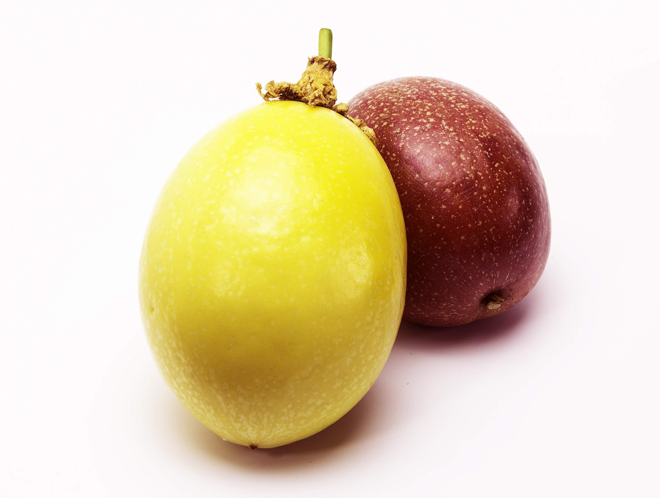 Passion Fruit Buy Online In Lebanon At Lebanon Desertcart Com Productid 82457481