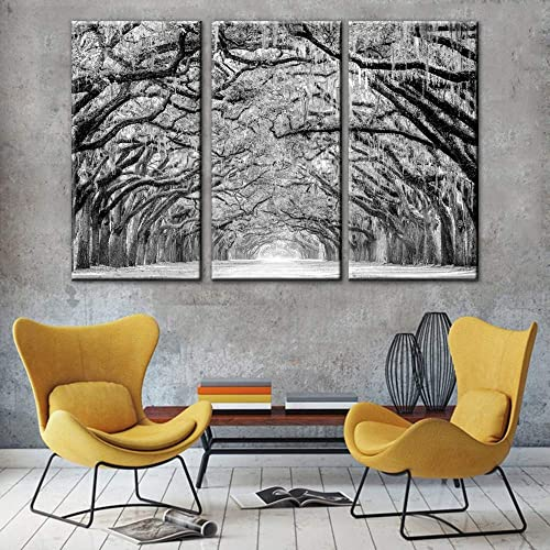 Black and white Winter Large Tree Photography Print,Abstract Canvas Artwork,Stretched and Framed,The path of Live Oak trees are draped