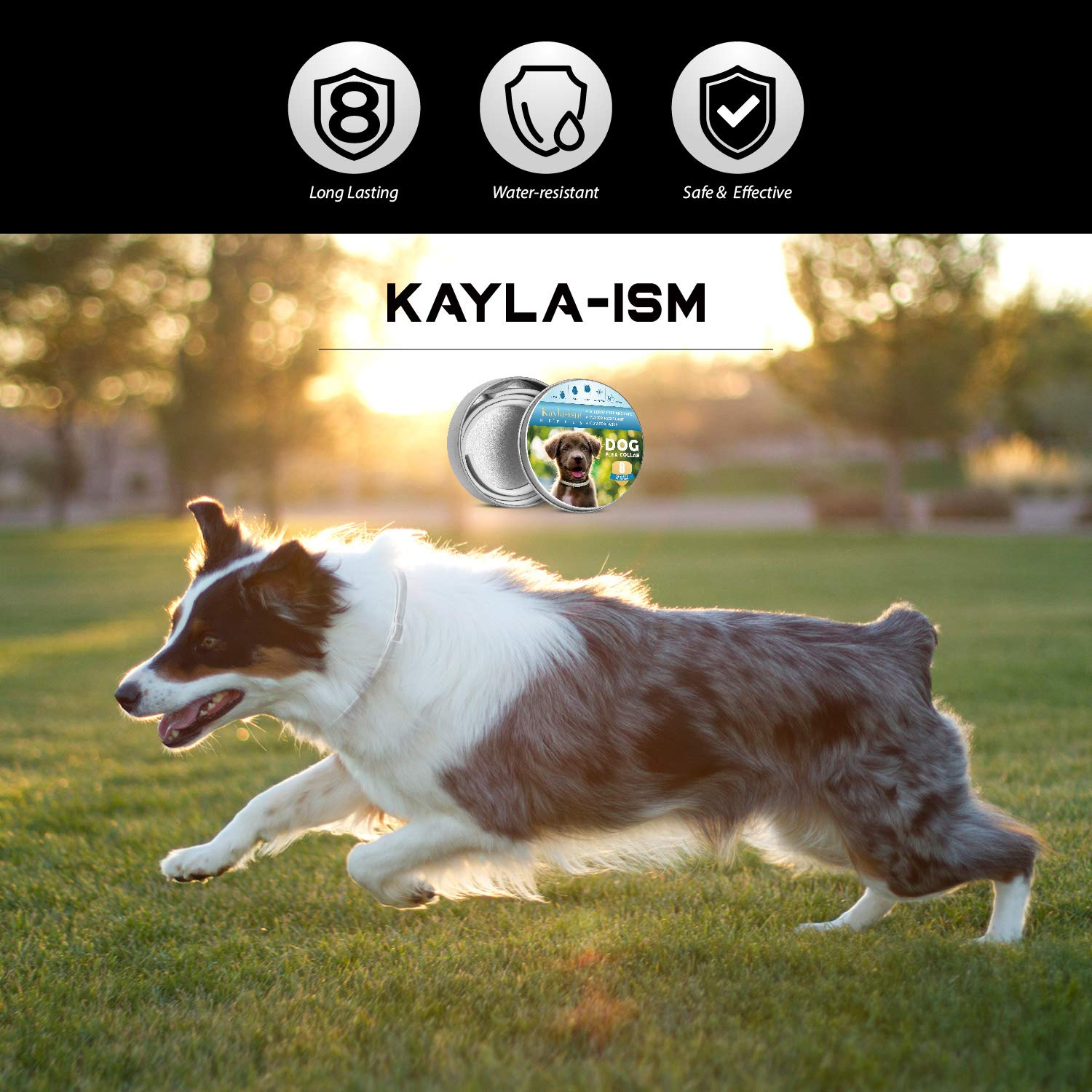 Kayla-ism Dog Flea and Tick Collar, Natural and Essential Oils, Waterproof, One Size Fits All, 8 Months Full Protection, Healthy and Harmless by Kayla-ism (Image #6)