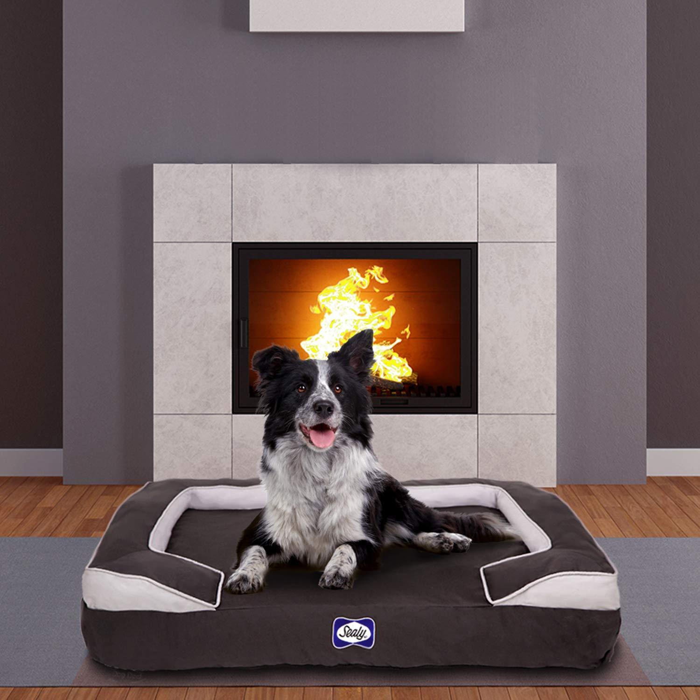 Grey XL Grey XL Sealy Dog Bed Cushy Cuddler   Crushed memory and orthopedic foam bolstered dog bed, Extra Large Grey