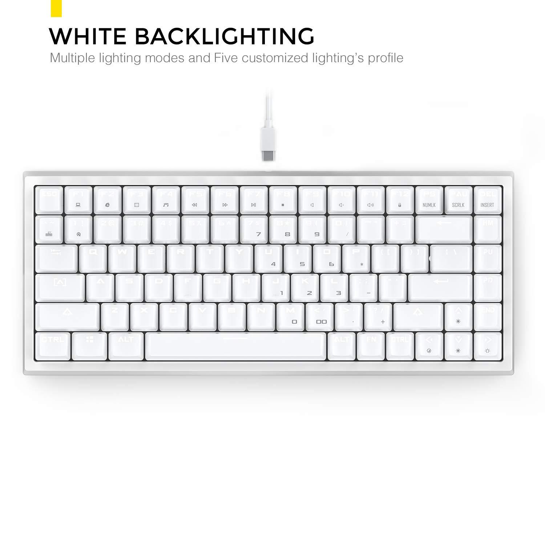 Bleu Switch, Noir DREVO Gramr Clavier de Jeu m/écanique 84 Touches 75/% TKL avec Blanc LED R/étro-/éclairage USB Filaire QWERTY