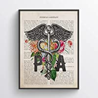 Physician Assistants Print, PA Student Gift Idea, Health care practitioner Medical Decor