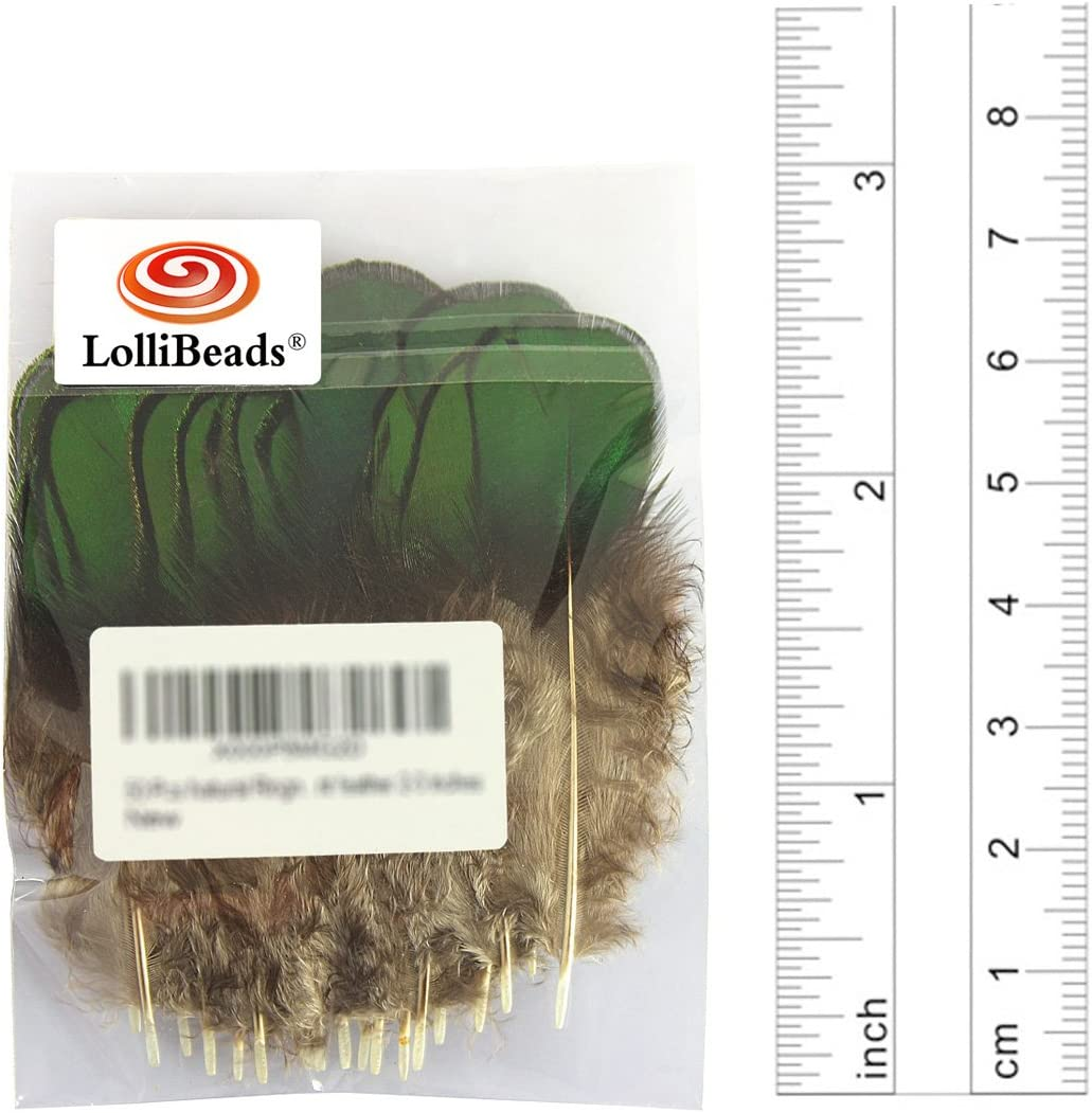 LolliBeads TM 20 Pcs Green Lady Amherst Bronze Iridescent Plumage Feathers inches Long 2-3 inches