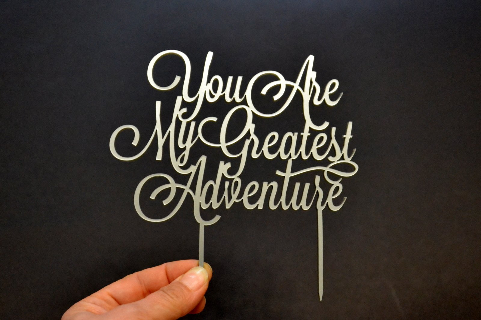 Cake topper You are my greatest adventure Wedding Cake Toppers cake decorations (width 6'', silver)