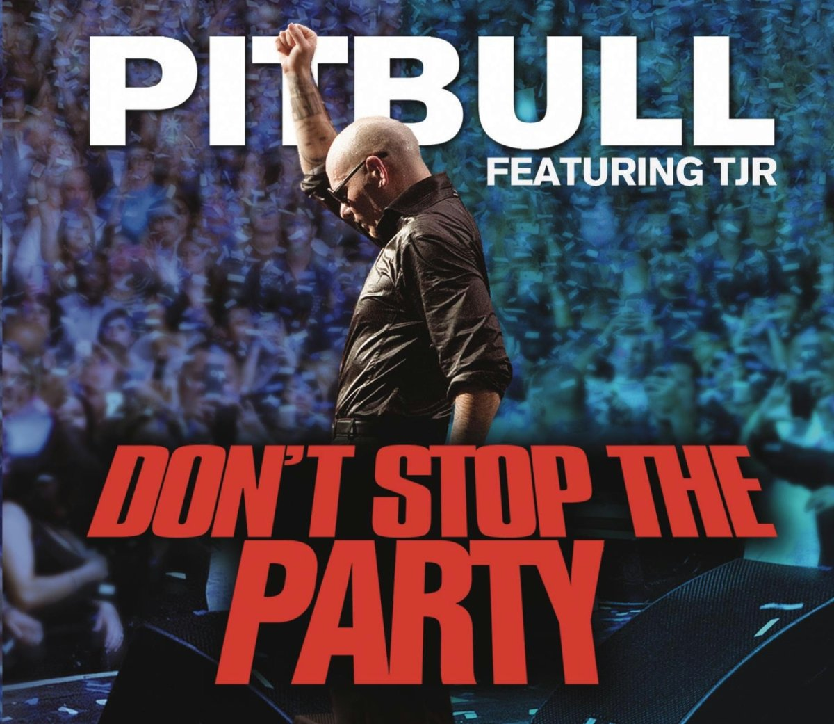 10. Pitbull 'don't stop the party' capital tv's top 30 bank.