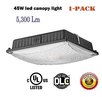 1000LED LED Canopy Light, 45W 5, 300 Lumens, 200W HID/HPS ...
