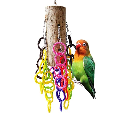 Danigrefinb Suministros para Mascotas para pájaros Brillante ...
