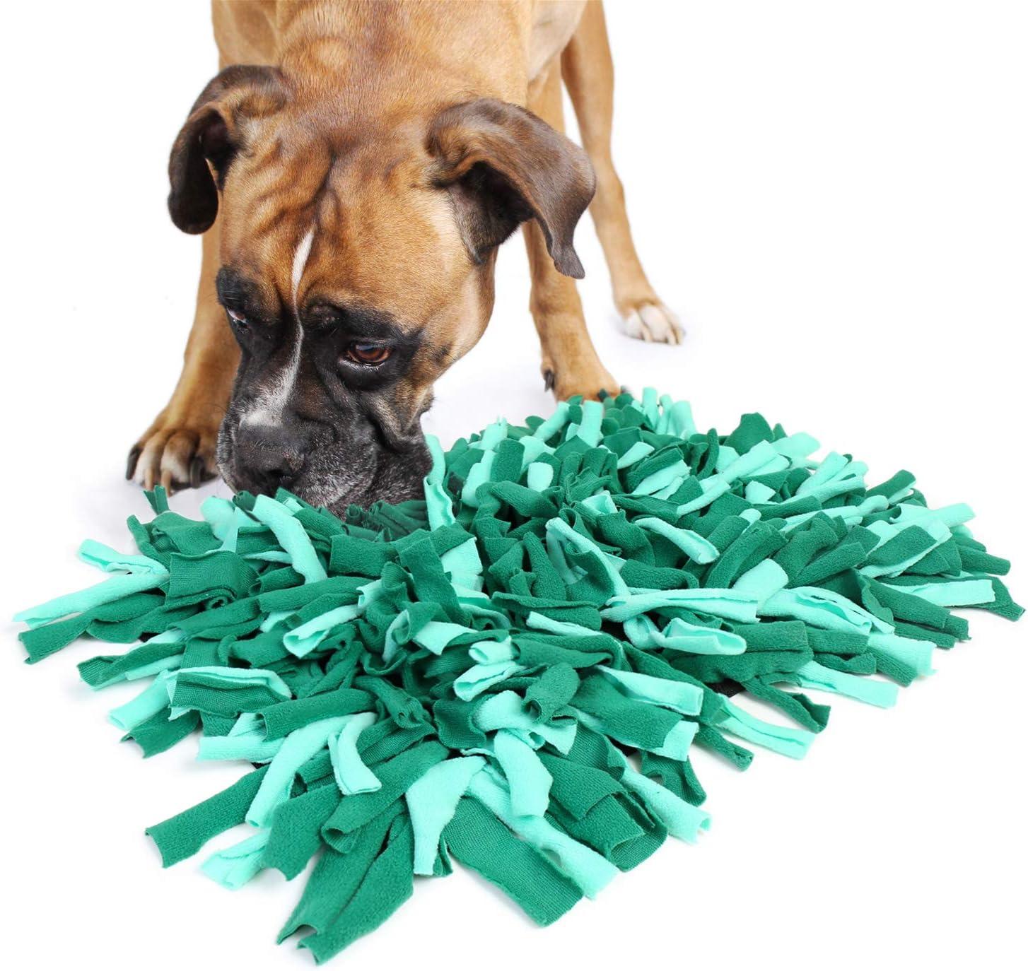 Bella & Balu Alfombra olfativa para perros (45 x 30 cm) | Juguete interactivo para mascotas que promueve la búsqueda de alimentos y estimula el olfato del perro (Verde)
