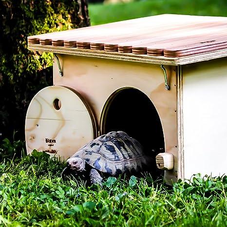 Blitzen - caseta profesional para tortugas de tierra de lujo, sin suelo