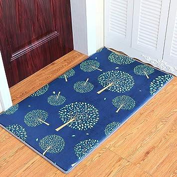 DSJ Puerta Colchones Dormitorio Baño Colchonetas Colchonetas Colchonetas Colchonetas de Entrada para el hogar,120 * 160 cm: Amazon.es: Deportes y aire libre